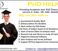 Thesis writing services in delhi