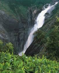Imagine Kerala Holidays | Best Kerala tour packages